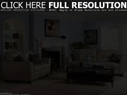 Brown Livingroom Interior Design Ideas Blue And Brown Living Room Colors I Chose