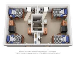 morrill hall university housing double shared floor plan