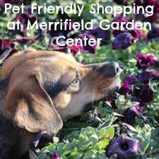 pet friendly shopping at merrifield garden center