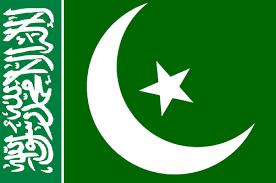 Flag Ottoman Image Ottoman Caliphate Flag Png Alternative History Fandom