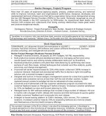 it director resume examples sweet sample it manager resume it example resume job
