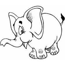 elephant coloring pages kids preschool kindergarten