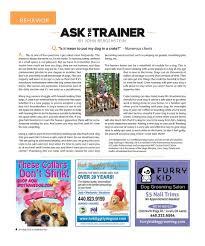 diggity dog pet news articles