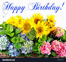 top birthday card generator layout best birthday quotes wishes