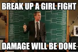 Fight Meme - break up a girl fight damage will be done explanation barney