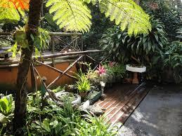 the 25 best cactus in spanish ideas on pinterest spanish garden