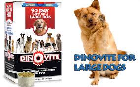 dino vite dinovite for large dogs