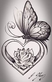 butterfly butterflies lotus flower