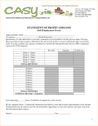 Profit And Loss Balance Sheet Template Startup Business Plan Template Admission Form Format For
