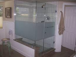 bathroom enchanting frameless bathroom glass shower door for