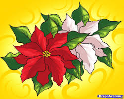 how to draw poinsettias step by step flowers pop culture free