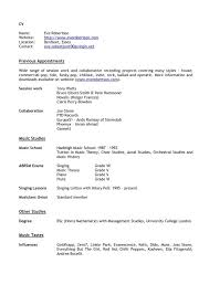 Resume Application Template Sample Resume Templates For College Students Experience Resumes