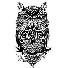 Patterned Flying Owl Drawing Illustration 67 Best Owls Images On Owls Owl And Owl Tattoos