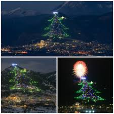 christmas trees the most original instances from around the world