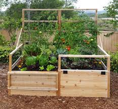 Garden With Trellis 3 U0027 X 6 U0027 Raised Garden Bed With Hinged Fencing And Trellis