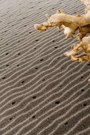 teppichboden design tuft teppichboden aus polyamid gewerbe bedruckt les best