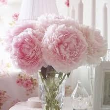 flowers okc wow flowers 30 photos florists 1633 w st oklahoma city