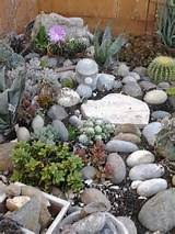 rock garden ideas image library