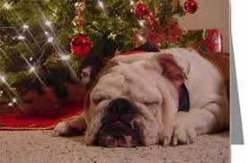 bulldogs dogbreed gifts bulldog cards ornaments