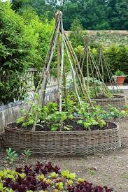 Kitchen Garden Designs Vegetable Garden Design For The Veggie Lover