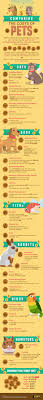 25 best pet infographic ideas on pinterest puppy facts dog
