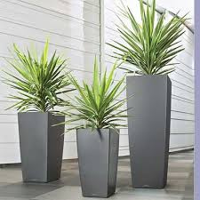 lechuza cubico planters tall tapered square plant pots
