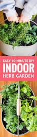 Vegetable Container Garden by Best 25 Diy Herb Garden Ideas On Pinterest Indoor Herbs Herb