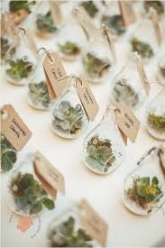 wedding souvenir ideas the 25 best succulent wedding favors ideas on