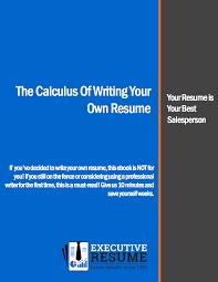 Senior Sales Executive Resume Download Top Executive Resume Writing Samples Template Tools