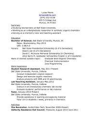 Undergraduate Resume Template Word Essay On Describing Biggest Dream As A Police Officer Dissertation