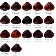 mahogany hair color chart mahogany violet burgundy professional hair colour cream tint