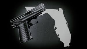 concealed weapon license applications expedited for active