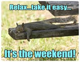 Take It Easy Meme - relax take it easy it s the weekend squirrel meme animals