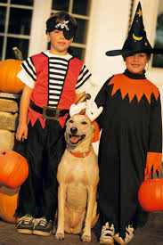 84 best halloween for pets images on pinterest pet costumes