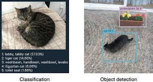 real time object detection with yolo