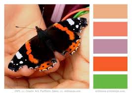 11 best mood boards images on pinterest colors colour palettes