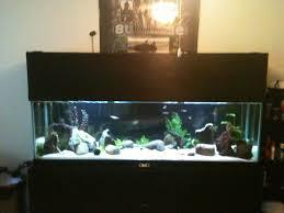 diy aquarium canopy diy do it your self