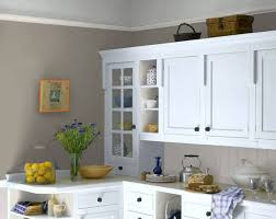 Best Kitchen Paint The 25 Best Dulux Cupboard Paint Ideas On Pinterest Dulux