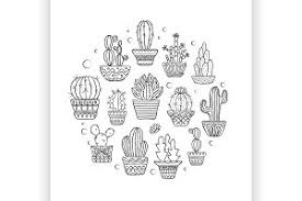 potted cactus doodle clip art illustrations creative market