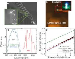 integrated nanoplasmonic waveguides for magnetic nonlinear and