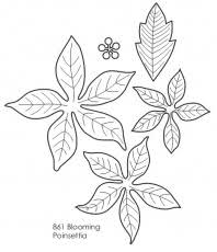 poinsettia coloring pages 1000 images about poinsettia on pinterest coloring home