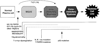 multiple myeloma increasing evidence for a multistep