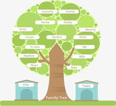 family tree png images vectors and psd files free on