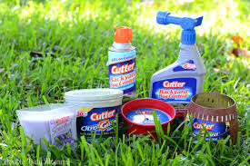 cutter insect repellent giveaway double duty mommy