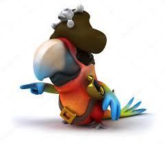pirate parrot 3d u2014 stock photo julos 8951591