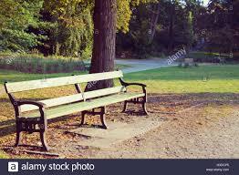 bench berlin empty park bench lietzensee park in berlin germany cinematic