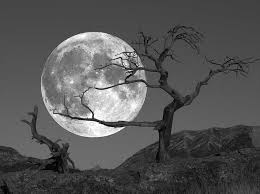 b w moon the fifth corner