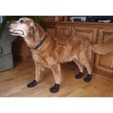 indoor shoes for hardwood floors carpet vidalondon