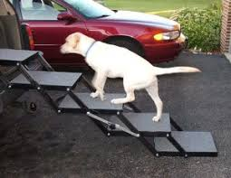 doggie steps for bed the best dog steps and rs for the car 2018 dogs recommend