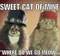 Fraggle Rock Meme - this week s top 10 internet memes alaska commons